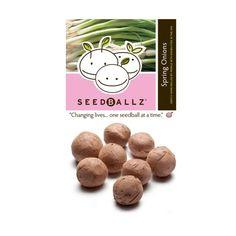 Seedballz Spring Onions - 8 Pack - Domestic Good