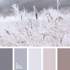 Winter #color #palette