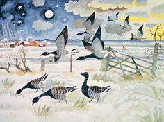 Limited edition pack - Michael Coulter | Suffolk Wildlife Trust
