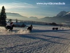Horse-drawn sleigh races in front of a snow-covered mountain panorama. The traditional Stephani race takes place every year on December 26th at 1:30 p.m  #Austria #Tyrol #horseracing