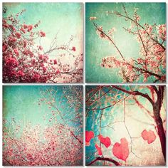 Autumn Photography, Sale - Autumn Decor, Set, Cards, Fall, Pink, Blue, Colour, Nature, Nursery, Vintage Floral Fine Art Four 5 x 5. $25.00, via Etsy.