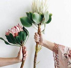 oversized flowers | floral arrangements