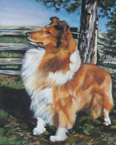 Rough Collie art print CANVAS print of LA Shepard by TheDogLover, $39.99