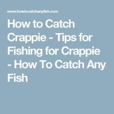 How to Catch Crappie - Tips for Fishing for Crappie - How To Catch Any Fish