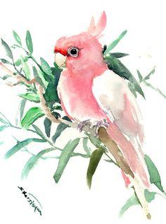 Pink Cockatoo, Original watercolor painting, 12 X 9 in, pink pets, birds, bird lover art, bird artwork, pet artwork parrots