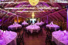 Villa Smeds - Uniikki maalaisidyllinen yritysjuhlapaikka vuonna 1862 rakennetussa pihapiirissä. Wedding Seating, Wedding Colors, Villa, Colours, Weddings, Wedding, Villas, Marriage, Mariage