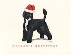 """Portuguese Water Dog in Santa Hat Boxed Christmas Notecards, from Dogstuff.com. These delightful ivory-colored Christmas notecards celebrate your favorite breed and are a fine way to wish your loved ones """"Season's Greetings!"""" This boxed set includes 8 identical 4.5"""" x 5.5"""" notecards, envelopes (4 in green, 4 in red), and 8 peel-off self-adhesive Santa Hat seals."""
