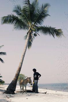 knaan lamu island