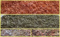 How To Dry Basil, Shag Rug, Herbs, Rugs, Pasta, Home Decor, Shaggy Rug, Farmhouse Rugs, Decoration Home
