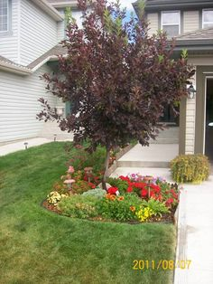 Small front yards are common in most cities today. However, it doesn't take a lot of space to dress up your front yard. There are many ways to define your sense of style and make a  statement with annuals and perennials, and small trees. Picture compliments of a DIY Homeowner.
