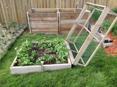 "I added a hinge to the strawberry bed ""cage"" tonight. My brother in law had some leftover brass door hinges from when they built there house. He gave me a couple a long time ago and i finally put them to use. The hinge makes it so much easier to open to pull weeds or harvest. When its fully open it sits nicely on the ground."
