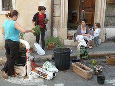 rue bellot - végétalisation by lapasserelleverte, via Flickr