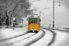 Traditional Yellow Budapest tram in the snow Stock Pictures, Stock Photos, My Town, Photo Library, Budapest, Surrealism, Europe, Snow, Traditional