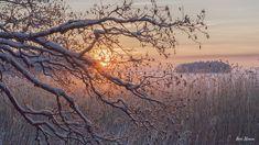 Pyhäjärvi ~ Satakunnan helmi    photo by Harri Nurminen - Satu Karlin (@KarlinSatu) | Twitter