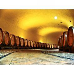 Ruffino Winery in Tuscany