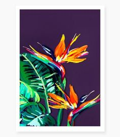 """Birds of Paradise"" Art Print by Jen Sievers – Miss Lolo"