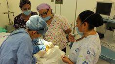 La primera donación se verificó el lunes pasado, por una mujer de 48 años, de la Ciudad de México, quien de visita en Morelia sufrió un evento cerebral vascular hemorrágico, ...