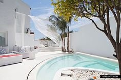 Vila Mandarina at Costa Del Sol in Spain  Love the white concrete and color of the pool.....