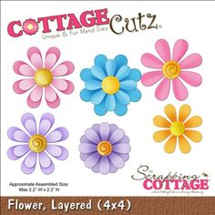 CottageCutz Die with Foam, 4 by 4-Inch, Layered Flower Co... https://www.amazon.com/dp/B007WDOFLS/ref=cm_sw_r_pi_dp_x_uQnTxbT6CCWXK