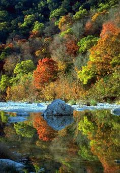Lost Maples in the Hill Country- TEXAS!!! Been there once and would love to go back again soon.