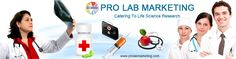 Welcome to Pro Lab Marketing Pvt. Ltd., We' offers Life Science Products Services in India at lowest Price. Our Life Science Products are DNA/RNA Services, Peptide services, Protein services, Antibody services and Cell Line services.