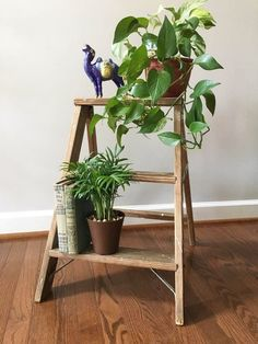 Step Ladder Plant Stand / Farmhouse Ladder / Vintage Wooden Ladder / Porch Decor / Re-purposed Knick Knack Shelf / Small Folding Ladder Small Plant Stand, Wooden Plant Stands, Diy Plant Stand, Wooden Ladder Decor, Wood Ladder, Diy Ladder, Small Step Ladders, Porch Decorating, Corner Decorating