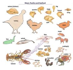 Forum | Learn English | Meat, Poultry and Seafood Vocabulary | Fluent Land