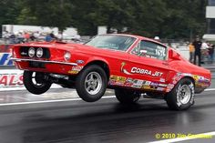 67 cobra jet standin on the hind legs Ford Mustang 1967, Ford Mustang Shelby Cobra, Mustang Fastback, Mustang Boss, Ford Mustangs, Shelby Gt500, Rat Rods, Vintage Mustang, Pony Car