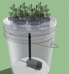 Hydroponic Gardening Ideas How to Make a Simple 5 Gallon Bucket Aeroponics System – Garden Pool Hydroponic Farming, Backyard Aquaponics, Hydroponic Growing, Hydroponics System, Growing Plants, Aeroponic System, Aquaponics Plants, 5 Gallon Buckets, Growing Lettuce