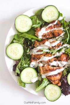 This Tzatziki Cucumber and Chicken Salad is a fresh and bright salad perfect for the summer time! Anyone who loves cucumber paired with the ease of heating up pre-cooked chicken will enjoy this salad recipe. | Posted By: DebbieNet.com |