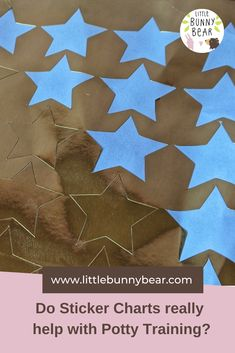 Should you use rewards such as sweets or sticker charts whilst potty training your child? Here's why Rebecca Mottram never recommends them. Natural Parenting, Gentle Parenting, Sticker Chart, Bunny And Bear, Attachment Parenting, Potty Training, Your Child, Charts, Stickers