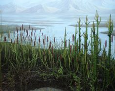 Flora of the Silurian Period