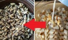 Stránka nenájdená | Báječná vareška Cereal, Food And Drink, Ale, Baking, Breakfast, Sweet, Recipes, Morning Coffee, Candy