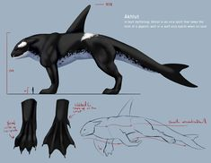Ak'lüt: Sea Wolf