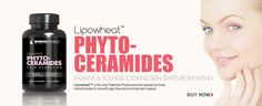 PHYTOCERAMIDES Get that Radiant & Younger Looking Skin that Starts from Within.   #womanskincare #phytoceramides #beautytipswww.sweetsweat.com/phytoceramides