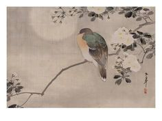 Japanese watercolor of bird perched on a branch of a blossoming tree Giclee Print - AllPosters.co.uk. Choose from over 500,000 Posters, Prints & Art. Fast UK Delivery, Value Framing, 100% Satisfaction Guarantee.