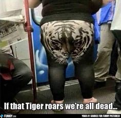 If that Tiger roars we're all dead... (Funny FAIL Pictures) - #dead #roar #tiger