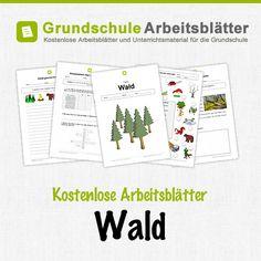 Kostenlose Arbeitsblätter und Unterrichtsmaterial für den Sachunterricht zum Thema Wald in der Grundschule.