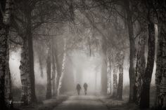 Walking in Mystery by Lars van de Goor - Photo 141691803 - Time Travel, Paths, Mystery, Walking, Journey, Van, Black And White, Pictures, Photography
