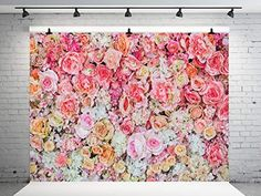 Kate Flowers Backdrop for Photography Pink and White Flowers Photo Backdrop Baby Newborn Photo Background Pink And White Flowers, Wedding Background, Photography Backdrops, Photo Backgrounds, Newborn Photos, Amazon, Newborn Pics, Newborn Pictures, Amazons