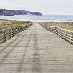 Tiempo de desconexión🌊📴 #paseo #paseoplaya #beach #beachy #wood #madera #nature #naturaleza #country #countrymood #salvaje #airelibre #aventura #inviernoenlaplaya #sincobertura #sincoberturasevivemejor #surf #sea #seaside #mar #orilla #pazmental #paraiso #paradise #paisvasco #marcantabrico #wesanderson #perspective #perspectiva #simetria