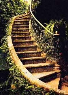 garden steps...like the railing too..