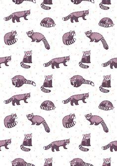 RED PANDAS - Dionne Kitching Illustration
