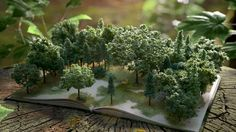 cgi forest book