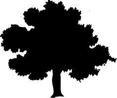 Tree, Silhouette, Forest, Oak, Elm, Maple, Poplar