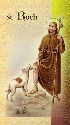 Patron Saint of Dogs St Francis Assisi, Saint Benoit, San Rocco, Saint Roch, Tarot, My Buddy, Patron Saints, Roman Catholic, Dog Lovers