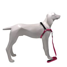 No Pull Best Dog Harness - with Leash Comfortable Safe for Pet Convenient Training and Walking >>> For more information, visit image link. (This is an affiliate link and I receive a commission for the sales) #Dogs