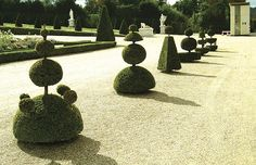 Let them eat privet. Versailles is one of several famous French topiary    gardens, with others including Chantilly, Choisy-le-Roi and Les Rochers. The    original, witty patterns for it were published in the 18th century and were    used in the recent restoration. Buy Topiary here .