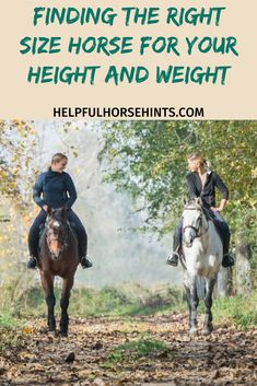 If you are new to horses you may be wondering what size horse you need. Whether you are a kid or an adult choosing the right size horse can be difficult if you dont know what things to look at.