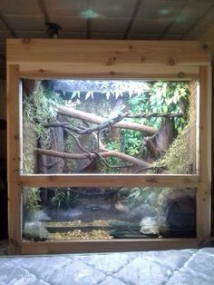 184 Best Snake Enclosure Images Fish Tanks Reptile Cage